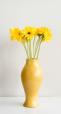 portrait orientation: Yellow gerbera flowers with long green stems in tall yellow curved vase on white table against white wall (portrait orientation)