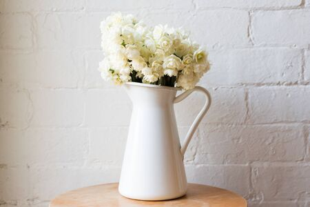centred: Erlicheer daffodils in white jug on wooden table centred against rustic white brick wall Stock Photo