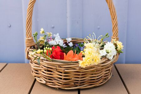 Close up of long handled wicker basket with bright spring flowers on outside decking against lilac wall (selective focus) Stock Photo
