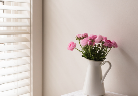 Pink ranunculus in white jug on table next to window with blinds Stock Photo