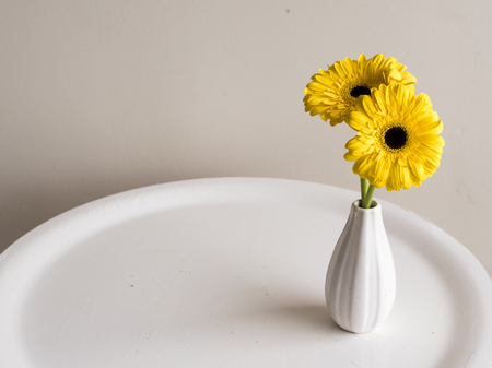 High Angle Close Up View Of Yellow Gerberas In White Vase On Round Table  Against Neutral