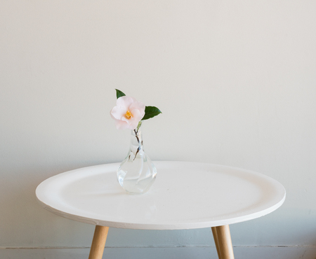 Single pale pink camellia in small glass vase on round white table against neutral wall background