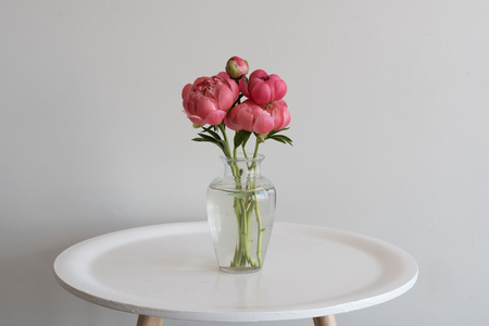 Small Bunch Of Coral Peonies In Glass Vase On Round White Table