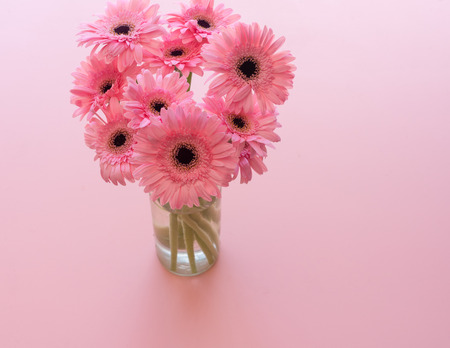 High angle view of pink gerbera daisies in glass jar against pink background (selective focus) Foto de archivo