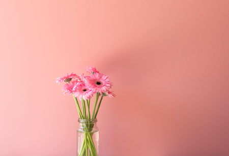 Pink gerbera daisies in glass jar against pink background with copy space Foto de archivo