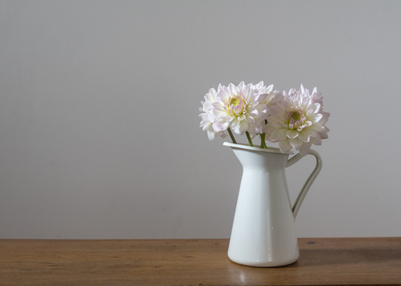 White dahlias in jug on wooden shelf against neutral wall background Фото со стока