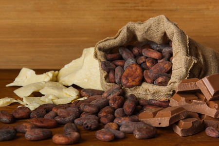 Cocoa beans and cacao butter on wooden background