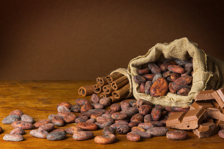Cocoa beans and cinnamon on wooden background Reklamní fotografie