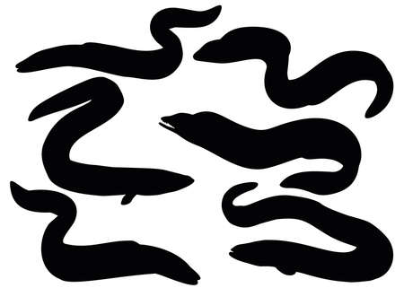 Fish eel in the set. Vecteurs