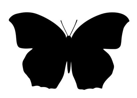 Butterfly. Vector image.