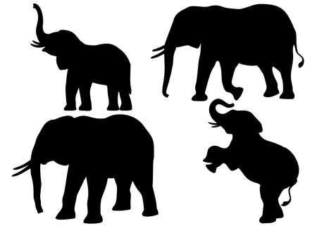 Elephants in the set. Vectral image.