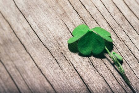 Shamrock leaf on shabby wooden background. St. Patrick's Day, selective focus.