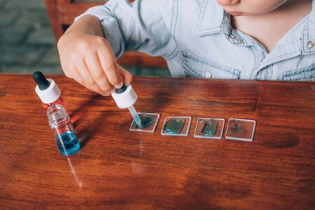 Little boy laboratory activity with colored water, pipette and pieces of glass. Homeschooling concept.