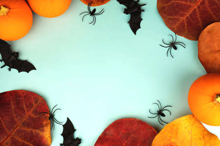 Little orange pumpkins with toys bats and spiders and Autumn leaves on blue background with copy space in the middle