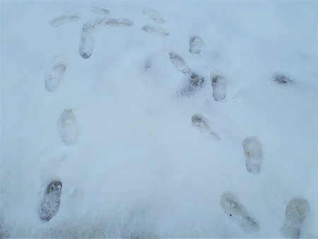 Pioneer. Someone left the first traces in the snow - walked in a circle
