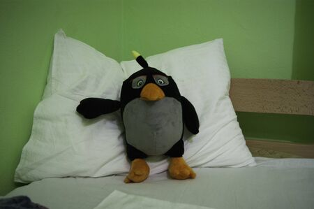 Good night - a soft toy penguin on a pillow invites to keep him company tonight