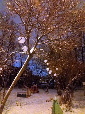 We do crafts with children - children decorated the trees in the yard with snowballs with a special tool for making snowballs. It turned out very beautifully. Night.