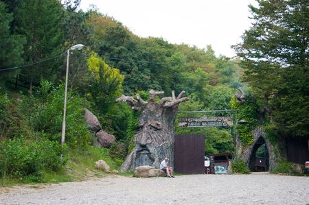 Russia, Sochi. September 2019. Tourist village Paradise delight. At the entrance to the park area - a huge tree with the face of a formidable hero. Excursions tourism Caucasian mountain vacation vacation
