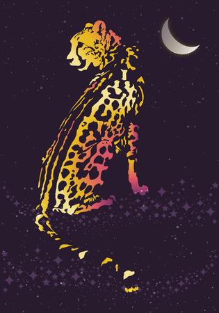 달 아래 밤에 표범