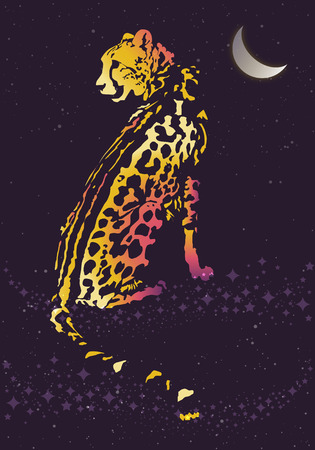 panthera: Leopard at night under the Moon