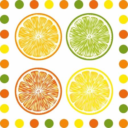 lobule: Citrus lobules are presented on the picture