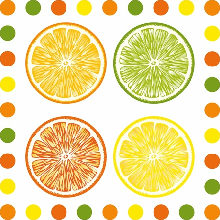 Citrus lobules are presented on the picture