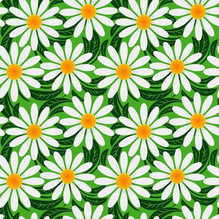greener: Floral seamless pattern with Camomiles