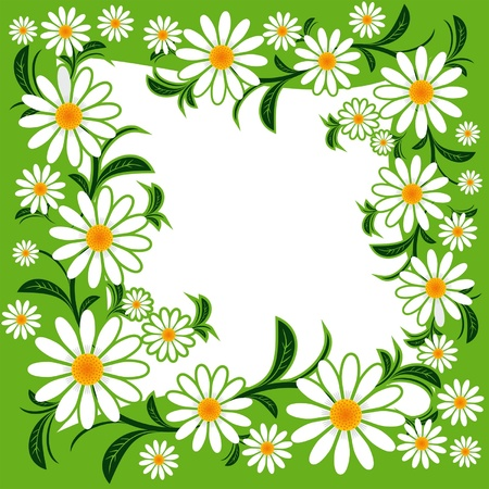 greener: Flower frame with Chamomiles