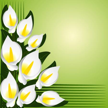 Flower border with calla lilies  Raster version