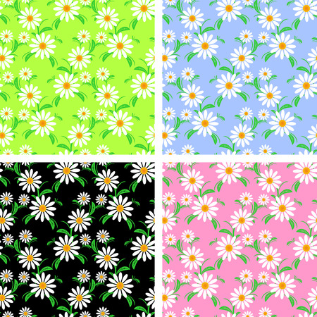 Flower seamless Pattern with Chamomiles in four variants. Illustration