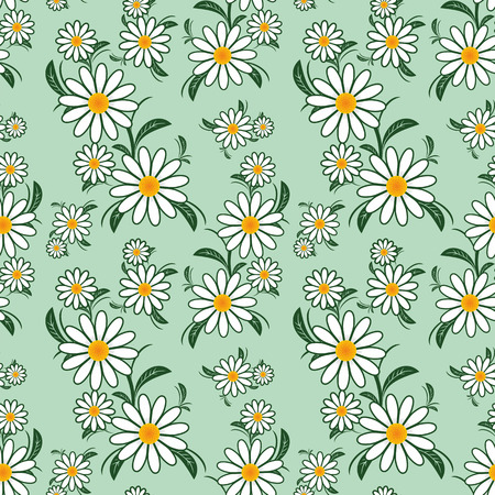 Flower seamless Pattern with Camomiles. Vector
