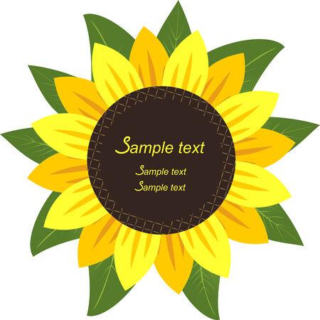 semillas de girasol: Girasol en el marco de formulario para su informaci�n.