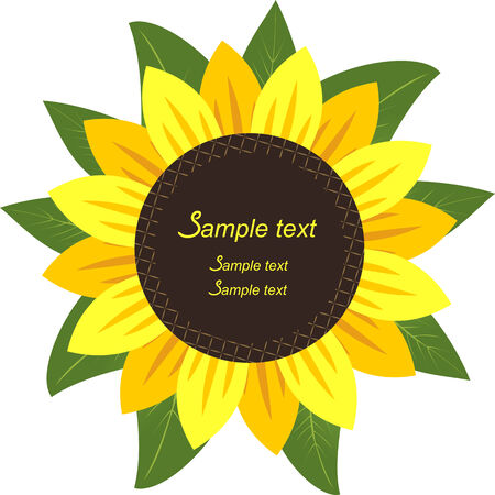 sunflower seeds: Sunflower in the form Frame for your information. Stock Photo