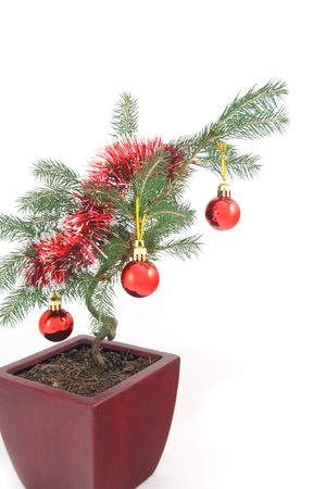 Unusual Bonsai Christmas tree decorated with baubles and splatter (closer) photo