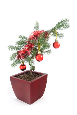 stock photo unusual bonsai christmas tree decorated with baubles and splatter