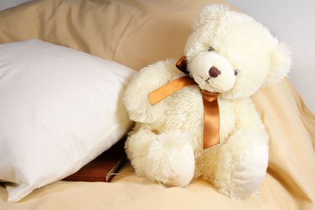 Cute creamy teddy bear sitting near the pillow with diary under it Stock Photo - 6209528