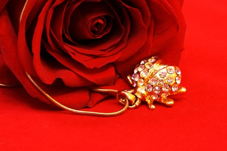 Golden Jewelry Ladybug and Red Rose Still Life Stock Photo
