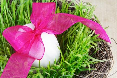 Single Festive Easter Egg in Green Grass photo