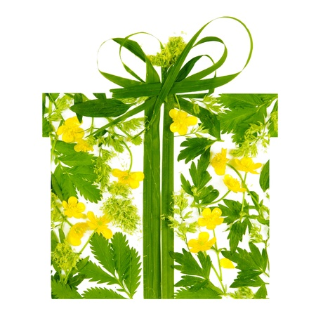 Floral Gift Box Shape Made of Flowers and Leaves photo