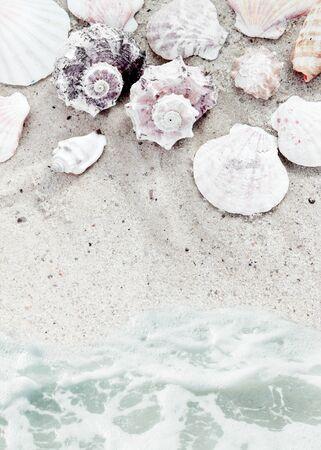 serf: Plage de mer avec coquilles baign�s par la fronti�re Serf