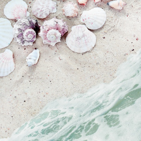 Sea Beach with Shells on Sand and Serf Square Background photo