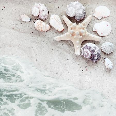 siervo: Playa de mar con obuses de arena y fondo de servil