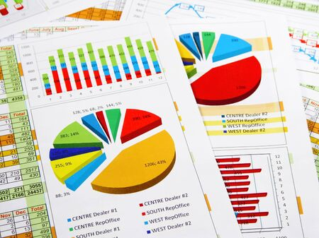 financial reports: Sales Annual Report in Graphs and Diagrams