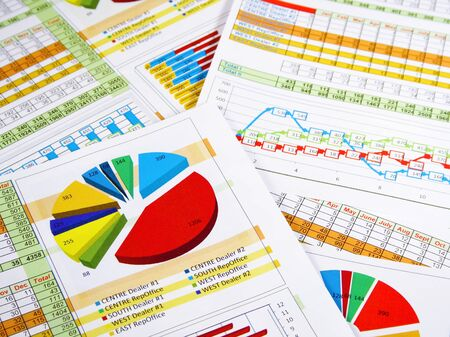 marketing research: Printed Annual Report in Charts and Diagrams