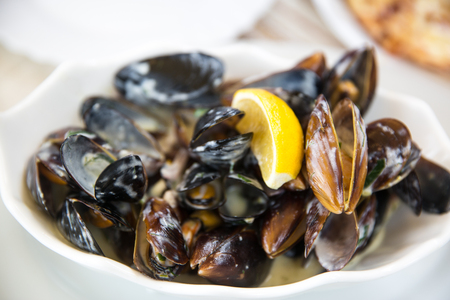 Mussels with white wine, creamy sauce and garlic. Mediteranean diet, organic healthy seafood. Standard-Bild
