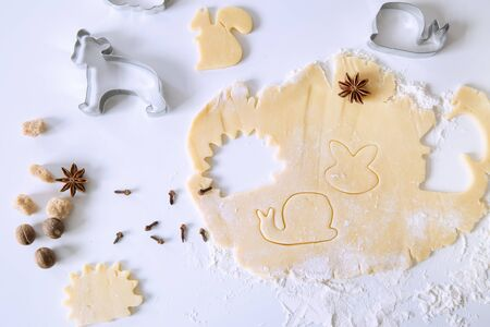 Homemade animals shape cookies preparations, top view. Pastry, cookies cutters and spice on white table, top view. 写真素材
