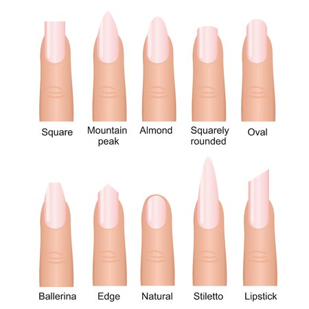Vector illustration set of different nails shape tipes. Manicure design on fingers isolated on white background in flat style.
