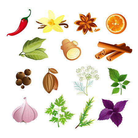 Vector illustration of set of herbs and spices in flat style. Illustration
