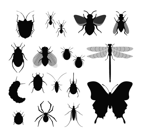 Vector illustration set of Insects, collection of different insects silhouettes, fly, bee, ticks and bug, spider on white background.