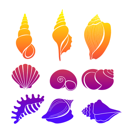 Vector illustration set of seashells, bright colored sea shells silhouette isolated on white background.